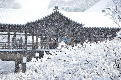 1東福寺雪