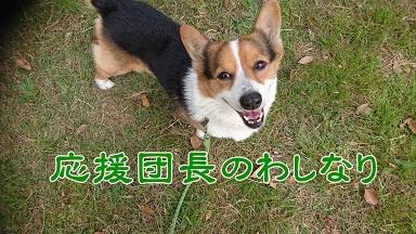 201705応援団長