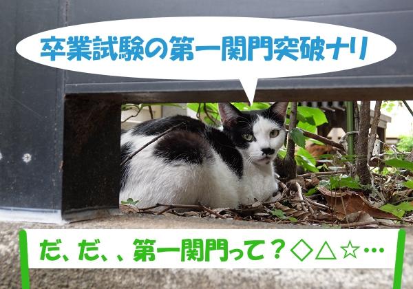 卒業試験の第一関門突破ナリ 「だ、だ、、第一関門って?◇△☆…」