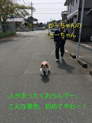 20170507 (3)