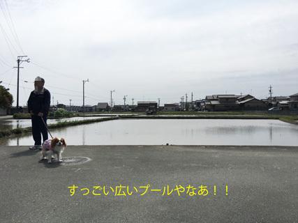 20170507 (12)