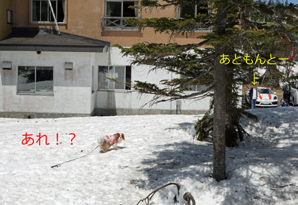 20170527 (12)