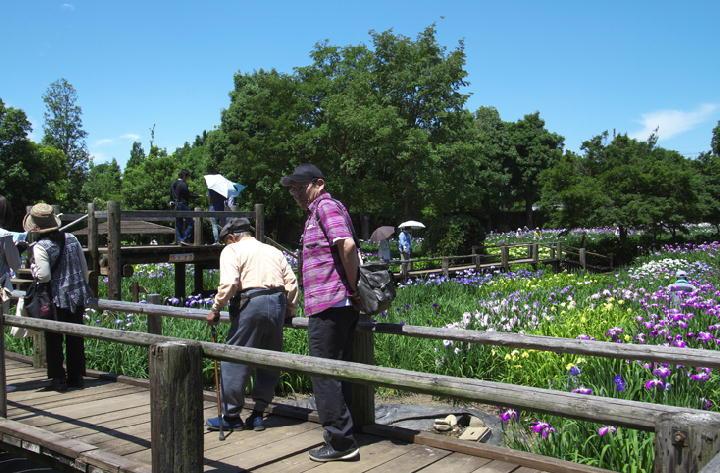 菖蒲園-000