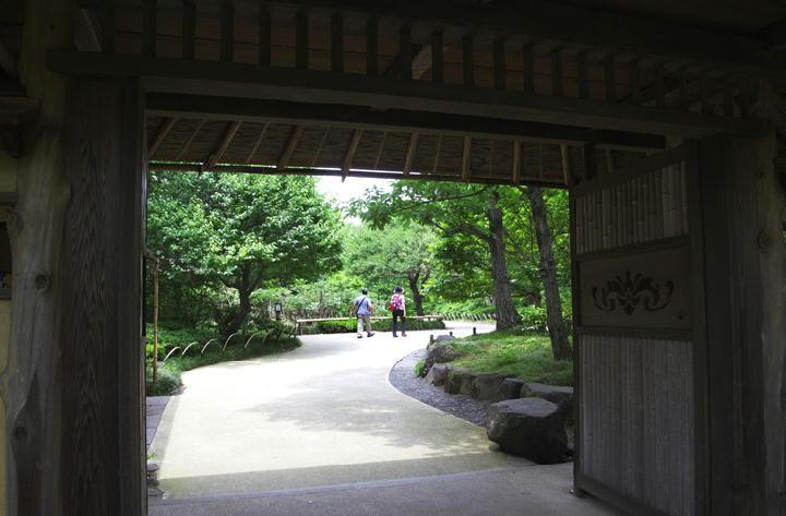 日本庭園-821