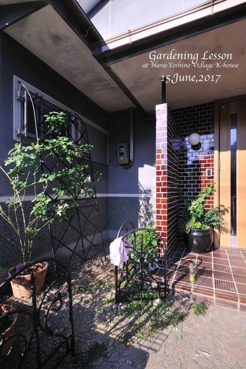 DSC_3480-L_convert_20170701140428.jpg