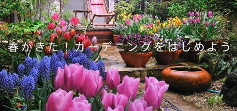 gar_springgarden2017_w-thumb-730x342-12614_convert_20170501094350.jpg