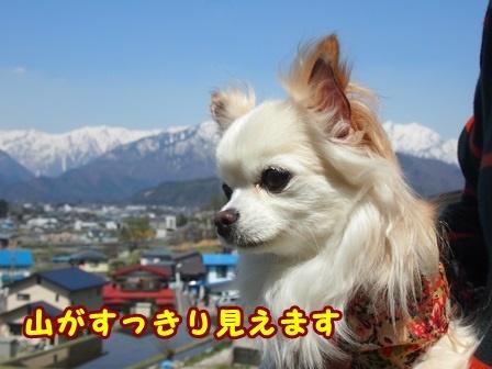 blog9401a.jpg