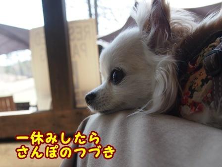 blog9429a.jpg
