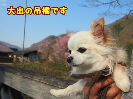 blog9460a.jpg