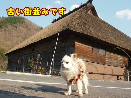 blog9462a.jpg