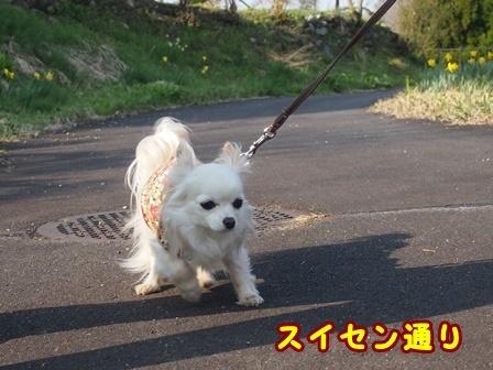 blog9468a.jpg