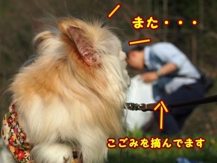 blog9474a.jpg