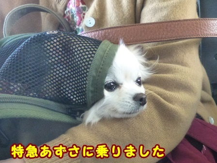 blog9578a.jpg
