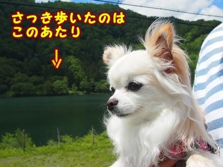 blog9667a.jpg