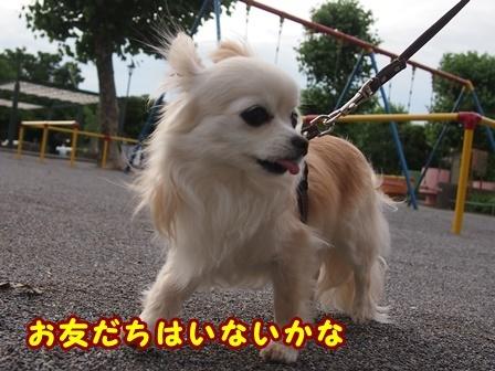blog9726a.jpg