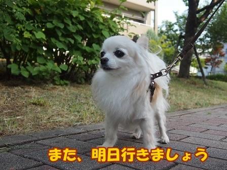 blog9736a.jpg