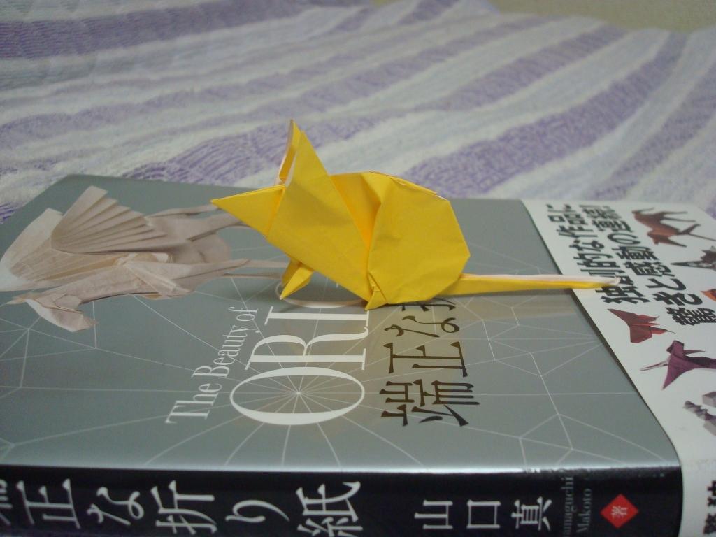 Origami-45.jpg