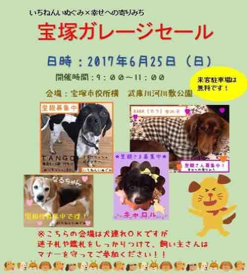 fc2blog_2017062321341305f.jpg