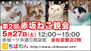 akasaka02_320x180.jpg