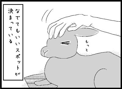 r64.jpg