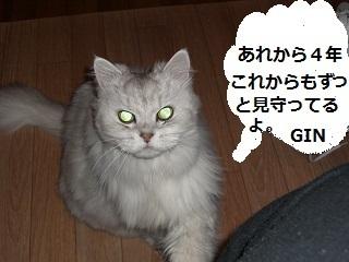 1CIMG2176.jpg