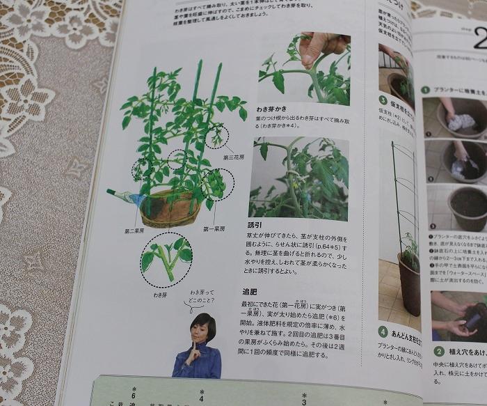 tomatohon2.jpg
