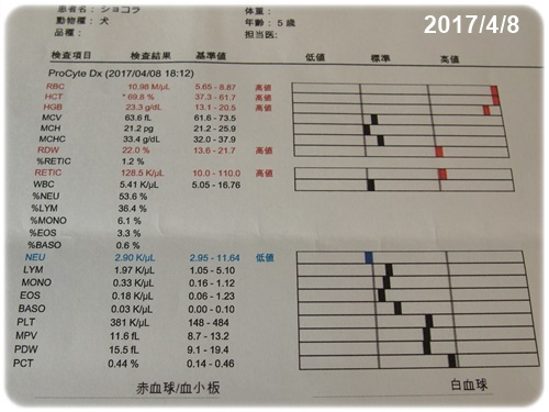2017/4/8検査