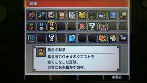 集会所制覇 (6)