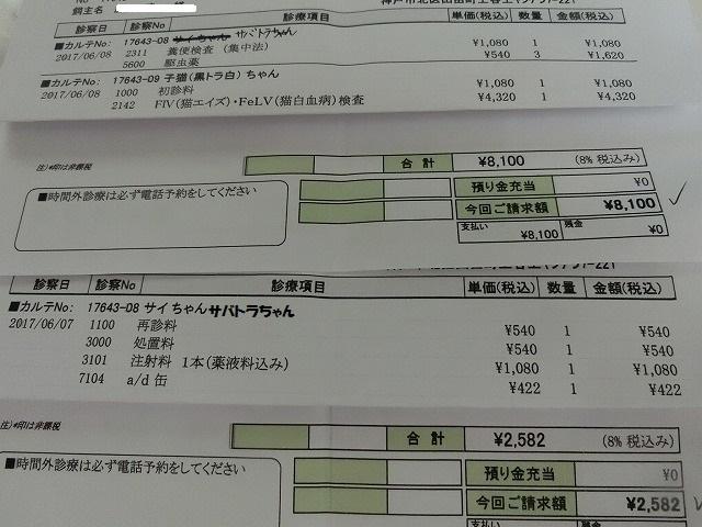 6月の収支報告 001