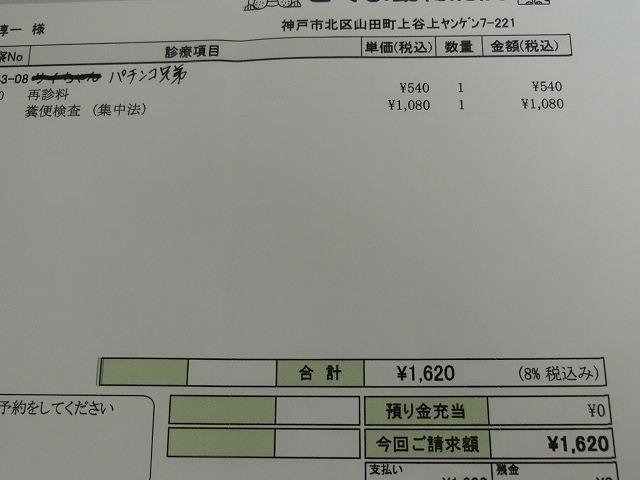 6月の収支報告 003