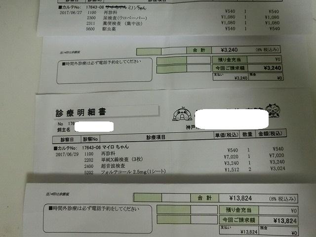 6月の収支報告 007