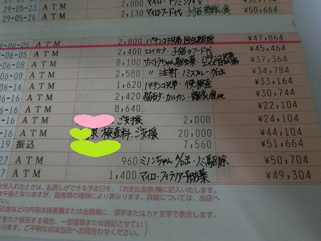 6月の収支報告 009
