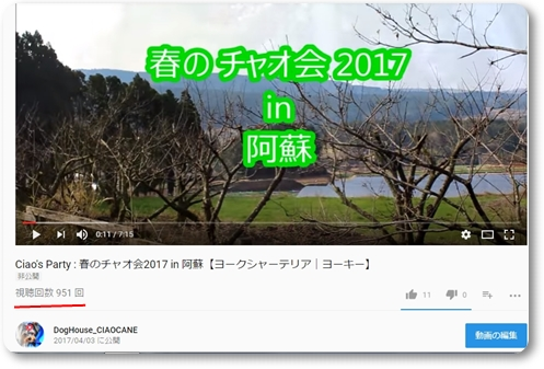 2017060105532288c.jpg