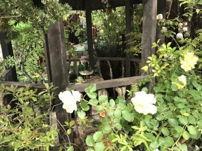 隠れ家の庭