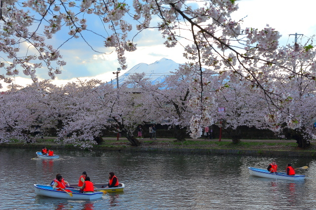 弘前城2017 5