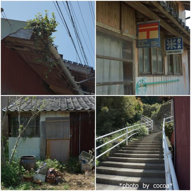 17-05-04的山大島(あづちおおしま)4