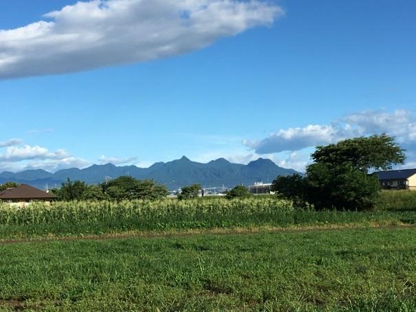 前橋 交通事故 接骨院 (3)
