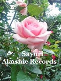 Akashic Records Reader Sayuri and pink rose