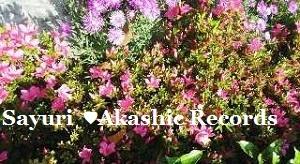 Akashic Records Reader Sayuri 5月の花々