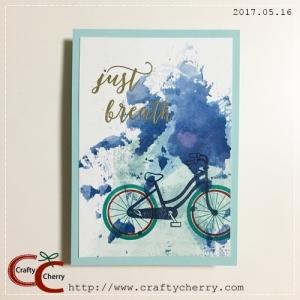 20170516_bike_water.jpg