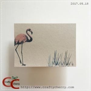 20170518_flamingo_japone.jpg