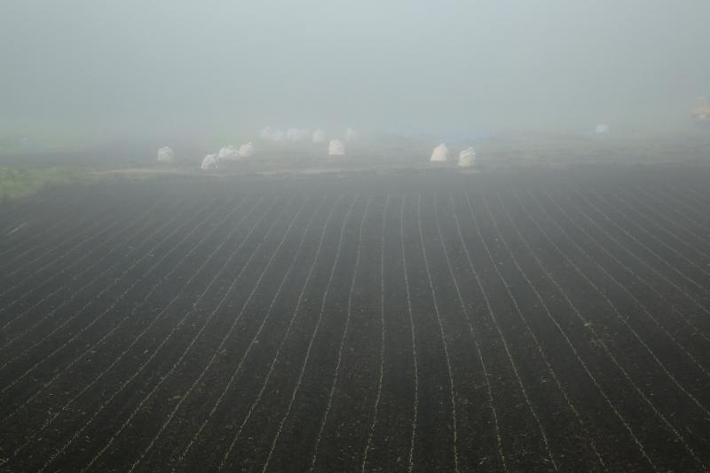013 濃霧の中で0001