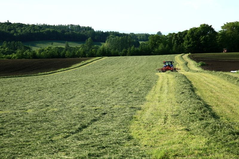 020 草刈り0001