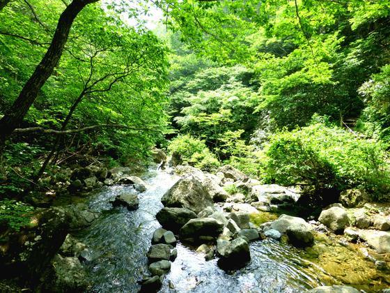 福島・あだたら渓谷自然遊歩道<トリップノート5月公開記事②>