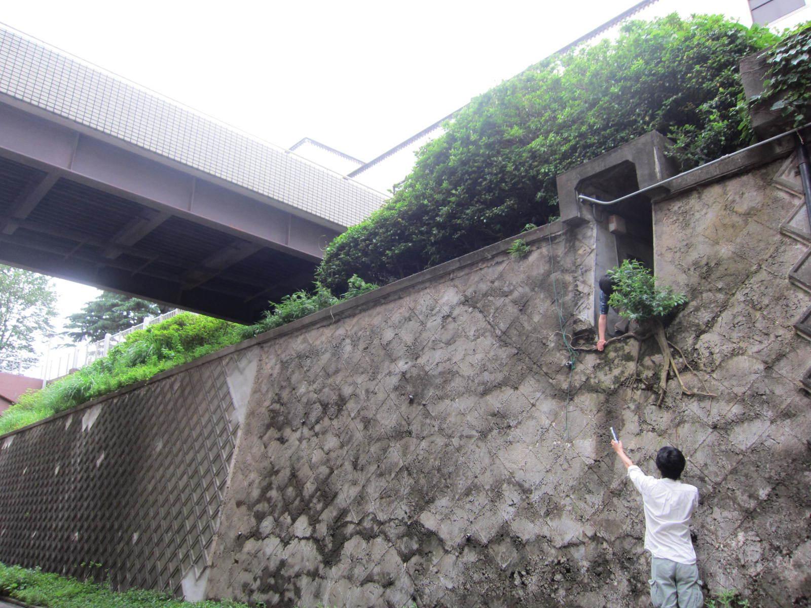 東工大本館の下にある秘密の地下通路 入口は二食目の前の坂