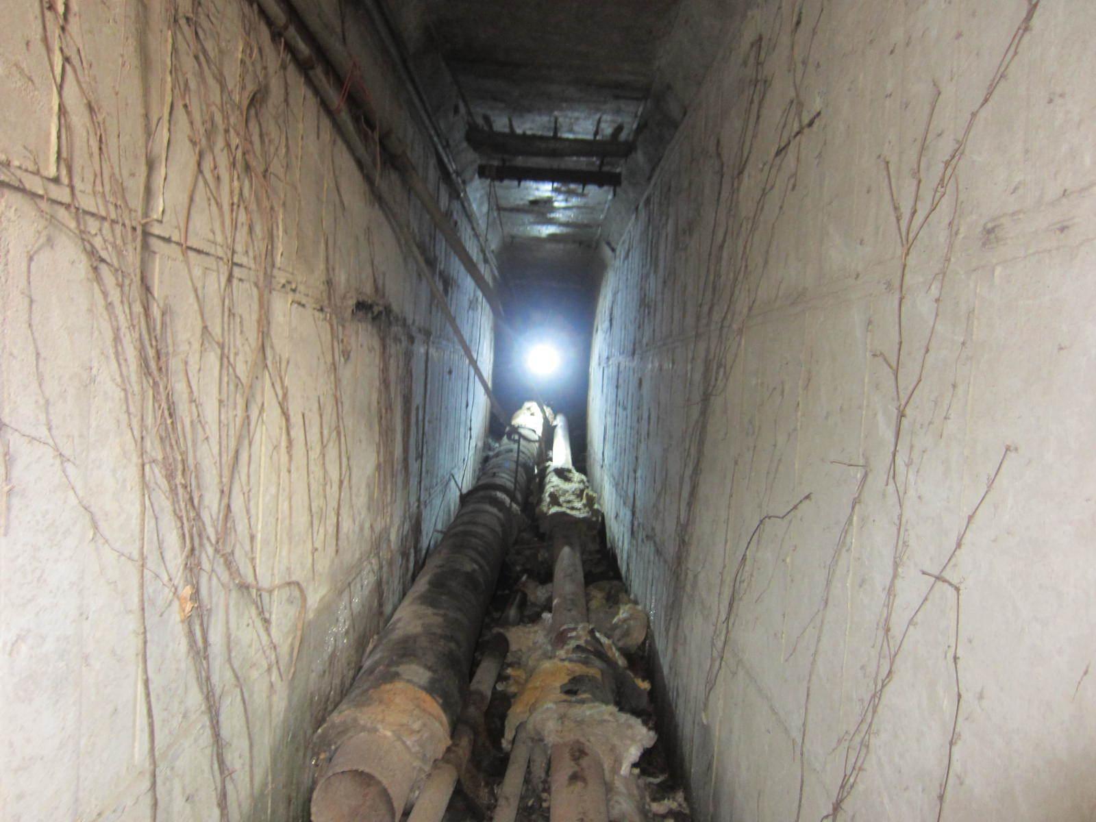 東工大本館の下にある秘密の地下通路 1人がやっと通れる