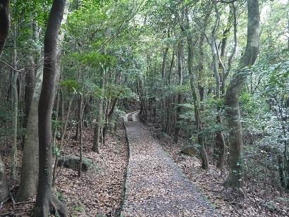 安満岳遊歩道(2)