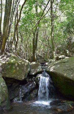 170503滝谷一の滝 (2)