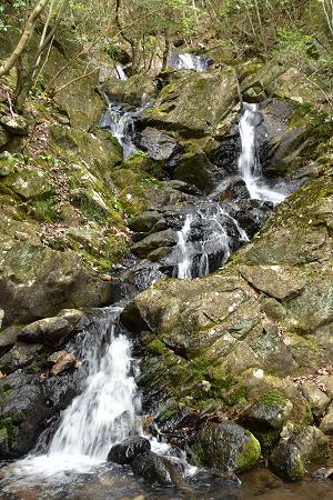 170503滝谷五の滝 (1)