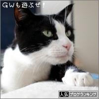 dai20170428_banner.jpg